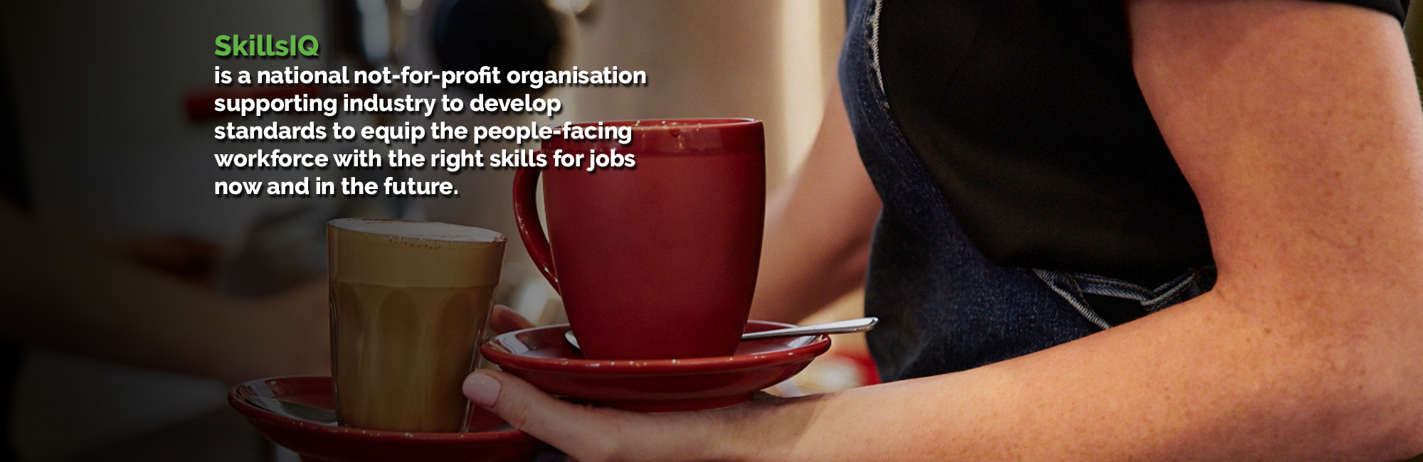 skillsiq skills service organisation skills iq is a not for profit independent organisation working to ensure that skills development and training products meet current and future needs in the