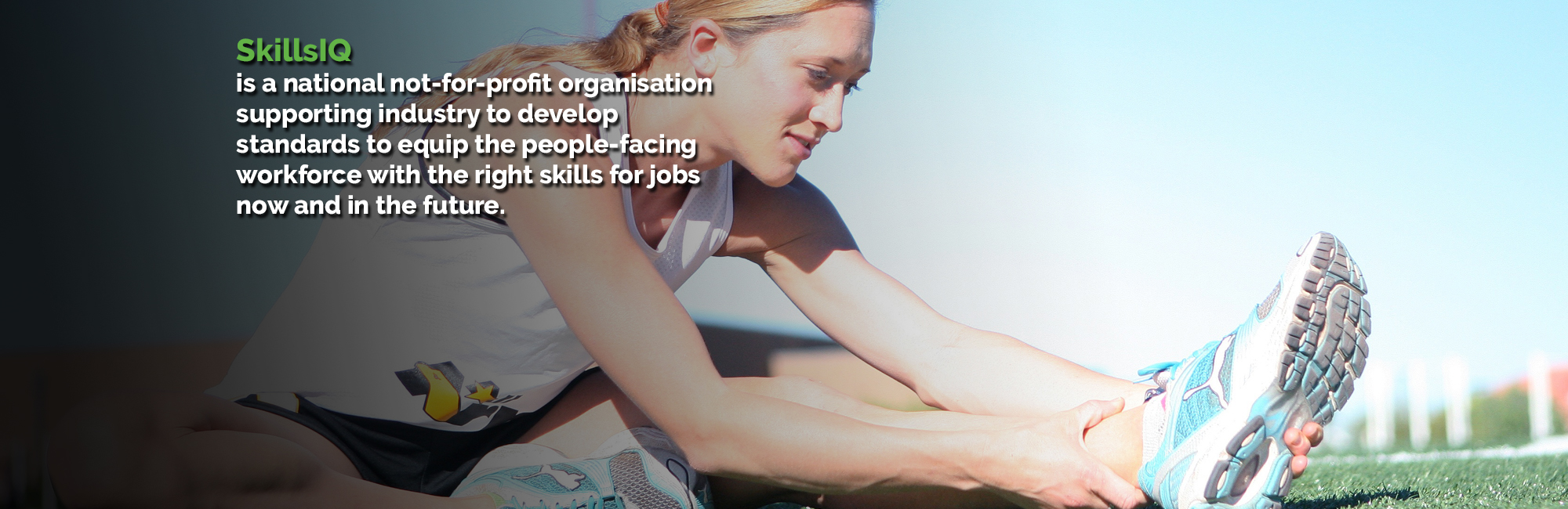 skillsiq skills service organisation skillsiq is a national not for profit organisation supporting industry to develop standards to equip the people facing workforce the right skills for
